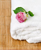 White towel with pink rose Stock Photos