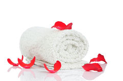 White towel and red rose petals Stock Photos