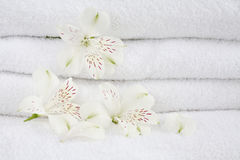 White towels. With flowers for wellness, spa or bath Royalty Free Stock Photography