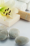 White towels and soap and flower. White towels and soap, flower, bamboo on white bacground stock images