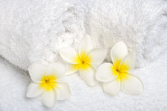 White towels  with white flowers Stock Photos