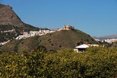 White town and lemon trees, Alora, Spain. Stock Image