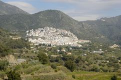 White town Stock Image