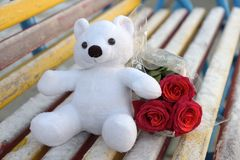 White toy bear and a bouquet of red roses on a bench covered with hoarfrost. In winter royalty free stock photography