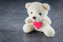 White toy teddy bear with heart on a gray background. The symbol stock photo