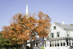 White traditional church and golden tree. Stock Image