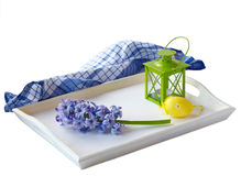 White tray with a hyacinth, on a white background it is isolated Royalty Free Stock Photo