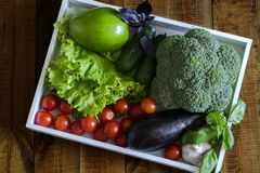 On a white tray ripe fruits and vegetables: avocado, tomatoes, cucumbers, eggplant, broccoli, Basil, garlic stock photos