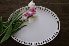 White tray. Tulips and white tray on wooden texture background Royalty Free Stock Photography