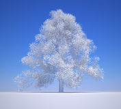 White tree Royalty Free Stock Images
