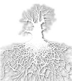 White tree. Editable  cutout of a leafless oak tree plus root system with background made using a gradient mesh Royalty Free Stock Photography