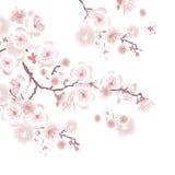 White tree blossom design element. Stock Photography