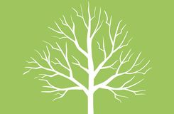White tree concept on green background. White tree concept green background natural logo wood set single leaf creative drawing design graphic print forest shape stock photo