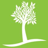 White tree on green background. White tree with leaves on green background Royalty Free Stock Photos