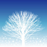 White Tree Illustration Stock Images