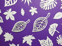 White tree leaves . Paper cutting Stock Image