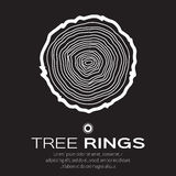 White Tree rings background and saw cut tree trunk , forestry and sawmill. Stock Images