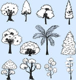 White tree set hand drawn Stock Image