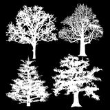 White trees on a black background Royalty Free Stock Photography