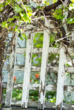 White trellis Royalty Free Stock Photos