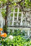 White trellis Stock Image