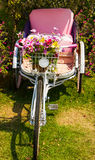 White tricycle Stock Images