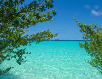 White tropical beach in Maldives with trees and blue lagoon Stock Images