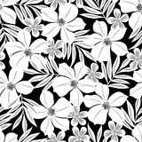 White tropical flower on a black background seamless pattern Stock Photos