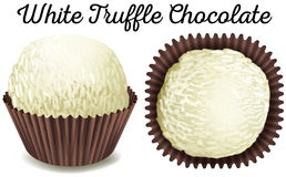 White truffle chocolate in brown cup Stock Photography