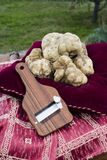 White truffles from Piedmont Stock Image