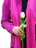White tulip. Lady in pink with a white tulip stock photography