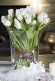 White tulip. Stock Photo
