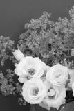 White tulip gentians and alchemilla mollis Royalty Free Stock Photo