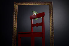 White tulip on red chair in painting frame Royalty Free Stock Photo