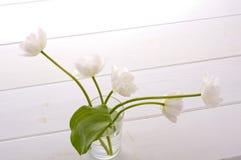 White tulips. In glass bottle on white floor Royalty Free Stock Image