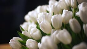 White tulips in a basket. In the background, go focus on the object stock video