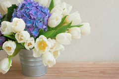 White tulips and blue hortensia flowers Stock Images
