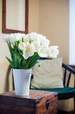 White tulips Royalty Free Stock Photography