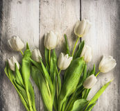 White tulips bunch on old light wooden background Royalty Free Stock Image