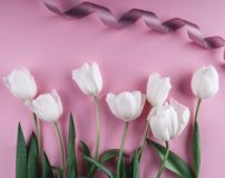White tulips flowers over light pink background. Greeting card or wedding invitation. Flat lay, top view, copy space stock image
