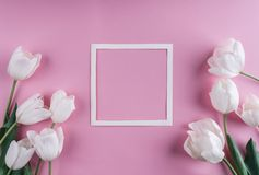 White tulips flowers and sheet of paper over light pink background. Saint Valentines Day frame or background. stock image
