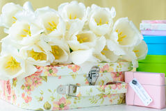 White tulips and gift boxes Stock Photos