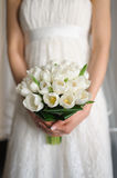 White tulips in hands of  bride. Bouquet of white tulips in hands of the bride in the room with natural light Stock Photography