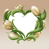White tulips illustration, vintage floral heart frame, flower banner Royalty Free Stock Photography