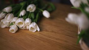 White tulips lie on the table. stock video footage