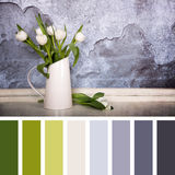 White tulips palette Royalty Free Stock Images