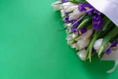White tulips and purple irises on a green background stock image