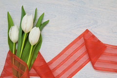 White tulips with red ribbon on a wooden background and empty space for text Royalty Free Stock Image