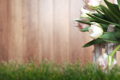 White tulips with wood background Stock Images