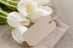 White tulips on rustic wood background Stock Images